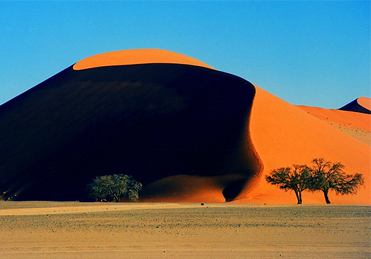 Funded Project in Namib Desert